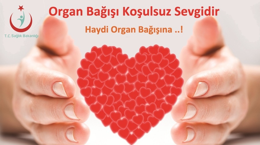 2021-Organ Bağışı