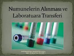 NUMUNELERİN ALINMASI-TOPLANMASI- TRANSFERİ KABUL,RED İŞLEMLERİ-PANİK DEĞERLER VE BİLDİRİMLERİ